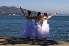 balerina s Obraz Stock