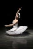 Balerina w studiu Obrazy Stock