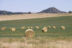 bales за осью сена центра поля Стоковое Фото