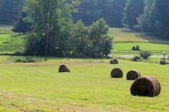 bales круглые Стоковая Фотография RF