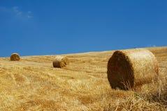Bales поля и сторновки стерни Стоковое Изображение RF