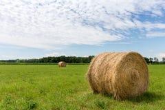 Bales сена в поле стоковое изображение