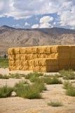 Bales сена в Сьеррах Стоковое Изображение RF