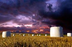 Bales сена на драматическом небе Стоковое Изображение RF