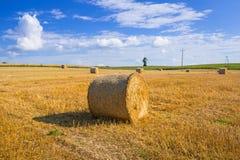 Bales сена на поле стоковые фотографии rf