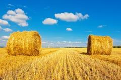 Bales сена на поле Стоковая Фотография