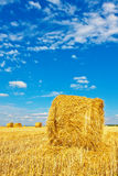 Bales сена на поле Стоковое Фото