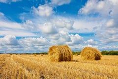 Bales сена на поле Стоковое Изображение RF