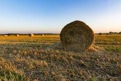 Bales сена на поле Стоковые Изображения RF