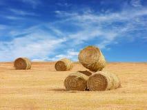Bales сена Стоковое Изображение RF