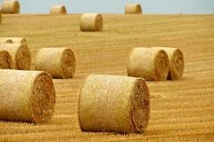 Bales сена Стоковые Изображения RF