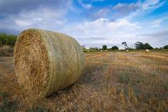 Bales сторновки стоковое изображение rf