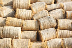 Bales Stock Photo