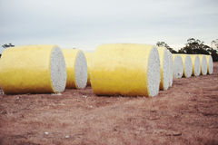 Bales of cotton in Oakey, Queensland Royalty Free Stock Photos