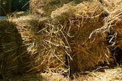 Bales of dry hay Royalty Free Stock Photo