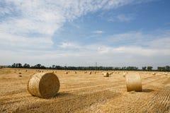 bales field сжатая сторновка Стоковые Фотографии RF