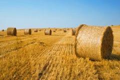bales field сжатая сторновка Стоковое фото RF