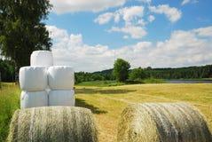 bales field сжатая упакованная сторновка Стоковые Фото