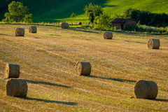 Bales in France. Bales in a field in the Tarn region, France Stock Image