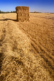 Bales of fresh hay. In late summer Stock Photography