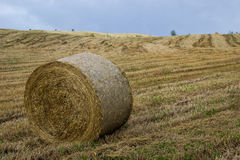 Bales on harvested field Stock Photos