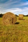 bales hay вокруг солнца Стоковые Изображения