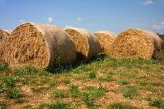 bales hay кругом Стоковая Фотография