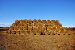 bales hay штабелировано стоковое изображение rf