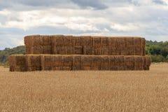 bales hay штабелировано стоковые фотографии rf