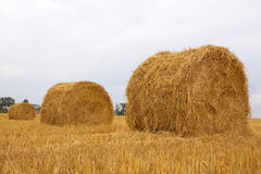 Bales of hay. Against a background of the sky royalty free stock photography