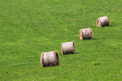 Bales of hay Royalty Free Stock Photography