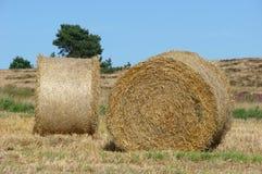 bales hay 2 стоковые фотографии rf