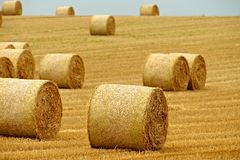 Bales of hay Royalty Free Stock Images