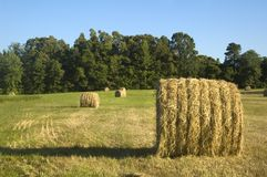Bales of Hay stock images
