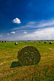 Bales of Hay Stock Photos