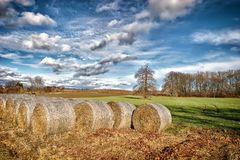 Bales of Hay. On a field under a cloudy sky royalty free stock photos