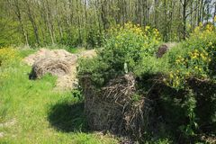 Blooming coleseed and bales of hay in the park in spring. The bales of hay with blooming coleseed are in the grassland of the farmer in the park for the show at royalty free stock photos
