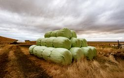 Bales of hay bundled and ready for transport to barn. Bales of hay bundled to protect from weather, and ready for transport to barn Stock Photo