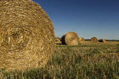 Bales of hay Royalty Free Stock Photos