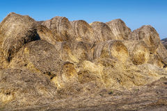 Bales of hay destroyed by storm Royalty Free Stock Image