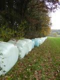 Bales of hay at the edge of a colored autum forest to dry stock image
