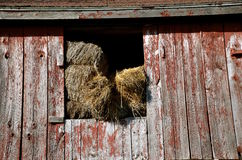 Bales of hay falling out of old barn Stock Image