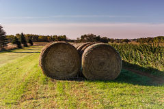 Bales of Hay. These are bales of hay in a farm in Minnesota Stock Images