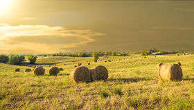 Bales of hay on a farm at sunset Stock Photo