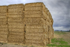 Bales of Hay on Farmland Royalty Free Stock Photo