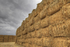 Bales of Hay on Farmland 2 Royalty Free Stock Photography