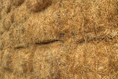Bales of Hay on Farmland 3 Stock Images
