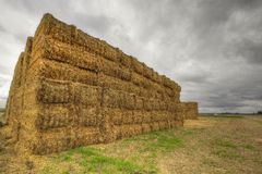Bales of Hay on Farmland 4 Royalty Free Stock Images