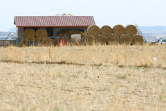 Bales of Hay Stock Photos