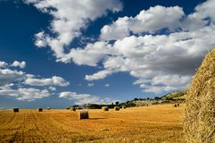 Bales of hay in a field. A picture of a vast field for golden hay, freshly cut and bundled into bales left around the field. The sky is a clear blue, with large Royalty Free Stock Photos